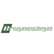 logo-bruynesteyninstallatietechniek